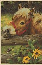 Cross Stitch Chart -Pony - No. 224-.....free uk P&p...