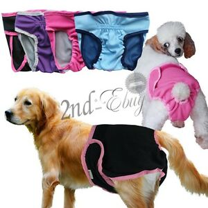 Hot Dog Pants Season Heat Menstruation Period Knickers Bitch Sanitary Nappy