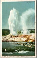 Vintage 1902 YELLOWSTONE NATIONAL PARK Postcard 10722 GIANT GEYSER Detroit Pub