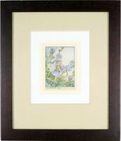 "Framed Antique Print ""The Chicory Fairy"", Original Vintage Cicely Mary Barker"