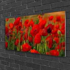 Glasbilder 100x50 Wandbild Druck auf Glas Mohnblumen Pflanzen