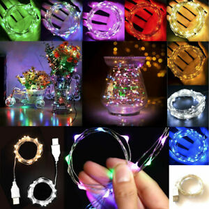 2m 5m 10m 20m USB Plug in Micro Rice Wire Copper Fairy String Party LED Lights
