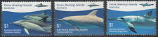 Cocos (Keeling) Islands 2016 Dolphins