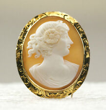 Brooch Pin 10K Yellow Gold Frame Vintage One Piece Brown Shell Cameo Pendant