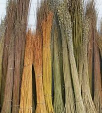 500 x 5ft (1.5m)  FAST GROWING Willow Whips for Living Structures.