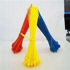 500/1000pcs Nylon Plastic Cable Ties Zip Tie Wraps Loop Strap(2.5mm x 100mm) New