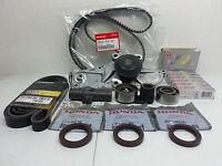 GENUINE TIMING BELT & WATER PUMP W/ COMPLETE KIT HONDA/ACURA V6 + NGK Plugs #13