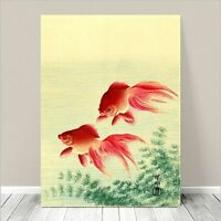 "Beautiful Japanese Nature Art ~ CANVAS PRINT 18x12"" ~ Two Red Goldfish Koson"
