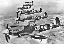 Spitfires, Supermarine, 1942, Reproduction World War 2 Photograph 7x5 inch