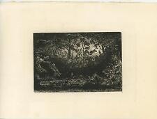 ANTIQUE WOODS FOREST GROVE NATURE FULL MOON NIGHT EVENING ORIGINAL ETCHING PRINT