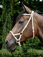 Équitation marrons sans offre groupée personnalisée