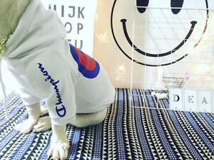 2019 New Blue Logo Pet Coat Dog Black & White Spring Sweater Clothes Puppy Coat