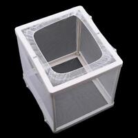 Aquarium Fish Tank Guppy Breeding Breeder Baby/Fry/Newborn Net Trap Box CO