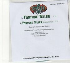 (FD65) Space, Fortune Teller - 2014 DJ CD