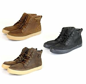 Neuf Authentique Polo Ralph Lauren Tedd Cuir Montante Sneakers W / Logo