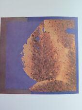 Josef Albers Original Silkscreen Folder XXV-2 Left Interaction of Color 1963