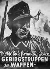 German WW2 Wehrmacht Waffen SS Poster mountain troops