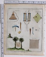 1779 Antico britannico sportivo stampa Bird RETI & trappole cazzo strade Caspita in vetro