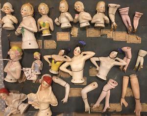 Antique German Hertwig Half Doll Dealer's Samples Of 13 Upper Bodies Etc.