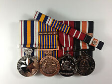 Northern Territory National Police Service Defence Medal 25