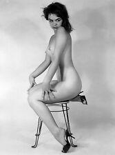 1960s Model Nude Perky Breasts Studio Pose Vintage Bar Stool 8 x 10 Photograph