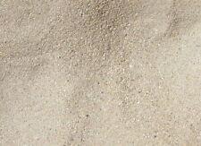 2013 nahezu weißer Sand Tregastel Greve Blanche Bretagne Frankreich