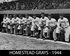 1944 HOMESTEAD GRAYS 8X10 TEAM PHOTO BASEBALL PICTURE NEGRO LEAGUE