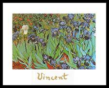 Van Gogh Iris Poster Bild Kunstdruck mit Alu Rahmen in schwarz 24x30cm