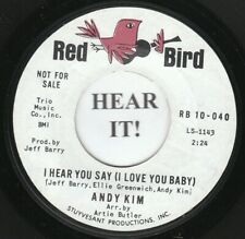 Andy Kim TEEN 45 (Red Bird 10-040 PROMO) I Hear You Say /Falling In Love   MINT-