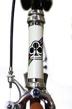 Vintage Colnago Master c record cobalto steel bike vintage eroica