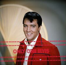 "ELVIS PRESLEY in the Movies 1964 8x10 Photo ""ROUSTABOUT"" Publicity Pose STUNNING"