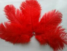 """5 pcs Ostrich Feathers Millinery & Crafts 6-8"""" Red"""