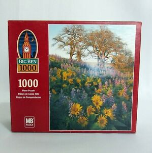 Gorge National Scenic Area WA 1000 Pc Jigsaw Puzzle Big Ben Factory Sealed
