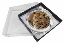 Leopard Glass Paperweight in Gift Box Christmas Present, AT-5PW