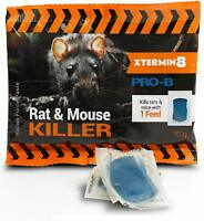 Racan Force Paste Xtermin8 pro b mouse poison kills mice with 1 single feed