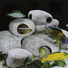 Cichlid Stone Rock Cave Aquarium Fish Tank Ornament Decoration Shrimp Breeding