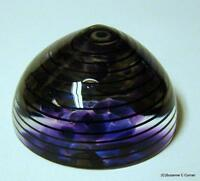 1999 Fire Island Studio Art Glass Paperweight Artist Signed Numbered M. Barbera