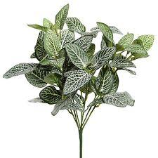 27cm Artificial Fittonia Plant - Houseplant - Office Plastic Plant
