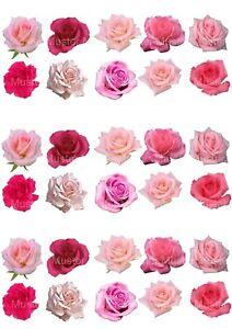 Blumen eßbar Muffin Tortenaufleger Tortenbild Party Deko Cupcake Rose Rosa rot