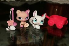 LPS Littlest Pet Shop Lot Cat With Chinchilla and Accessories