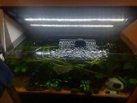 Spray Bar Nozzle Short fits Fluval Flex 123L 32.5G Mega Aquarium fish tank