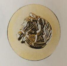 PLAIN OTTONE Rosettes in mano mostra gallese Pony Cob M/&M