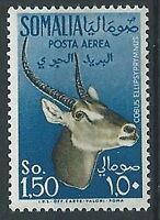 1955 SOMALIA AFIS POSTA AEREA ANIMALI 1,50 MNH ** - ED242