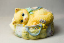 Calico Kittens: Welcoming A Whole New Bag Of Tricks - 488666 Kitten in Baby Bag