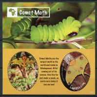 Liberia Butterflies Stamps 2018 MNH Comet Moth Caterpillars Moths 2v S/S I