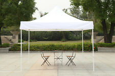 Canopy Ten 10x10 Fair Shelter Car Shelter Wedding Party Easy Pop Up