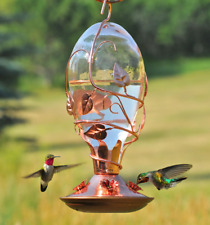 Hummingbird Tinted Glass Feeder Wild Bird Wildlife Decorative Outdood Nectar