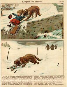 1900s COLLIE DOG SAVE GIRL-ST.BERNARD SAVE MAN in MOUNTAINS Antique Print Staub
