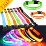 Luminous LED Flash Pet Night Safety Light Collar for Dog Chihuahua Puppy S/M/L