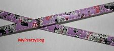 Halsband Hund Katze Hundehalsband lila rosa blau 25-30 cm Collar Dog NEU